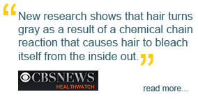 'New research shows that hair turns gray as a result of a chemical chain reaction that causes hair to bleach itself from the inside out,' CBS News